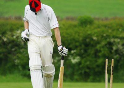 JMSY-Cricket
